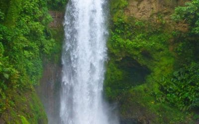 Magia Blanca Waterfall in La Paz Waterfall Gardens, Vara Blanca, Alajuela, Costa Rica