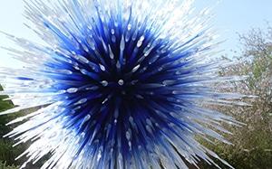 Chihuly Glass Exhibit at Desert Botanical Gardens