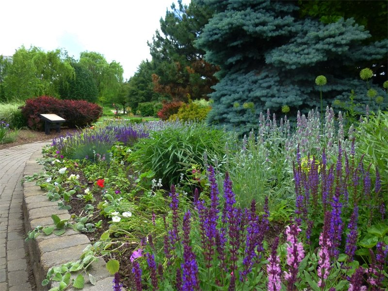 Serene-Beauty-of-Humber-Arboretum,-Toronto,-Canada